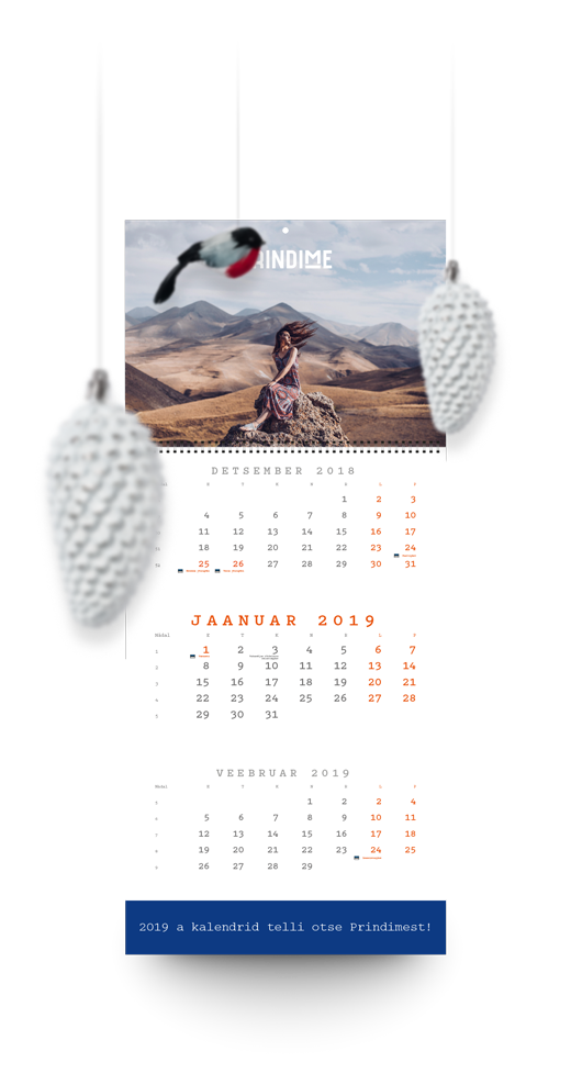 calendars-a3_520